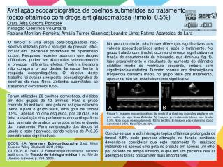 BOON, J.A.  Veterinary Echocardiography.  2.ed. West Sussex: Wiley-Blackwell, 2011, 610p.