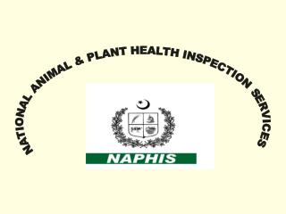 NATIONAL ANIMAL & PLANT HEALTH INSPECTION SERVICES
