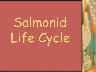 Salmonid Life Cycle