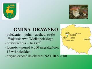 GMINA DRAWSKO - położenie - półn. – zachod. część Województwa Wielkopolskiego