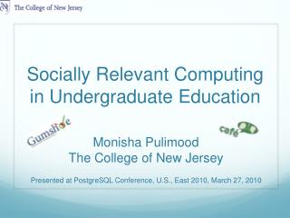 Socially Relevant Computing in Undergraduate Education