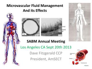 Microvascular Fluid Management  And its Effects