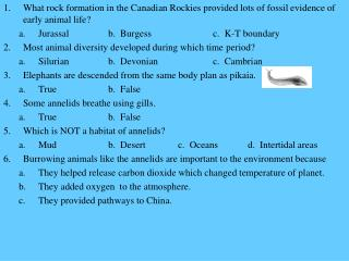 What rock formation in the Canadian Rockies provided lots of fossil evidence of early animal life?