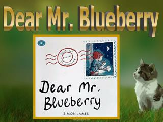 Dear Mr. Blueberry