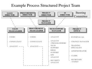 Example Process Structured Project Team