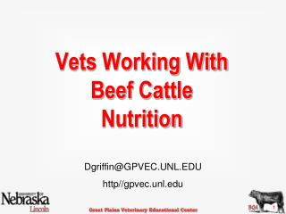 Vets Working With Beef Cattle Nutrition