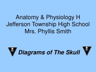 Anatomy & Physiology H Jefferson Township High School Mrs. Phyllis Smith Diagrams of The Skull