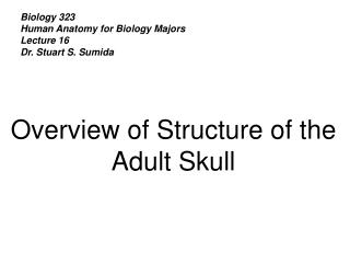 Biology 323 Human Anatomy for Biology Majors Lecture 16 Dr. Stuart S. Sumida