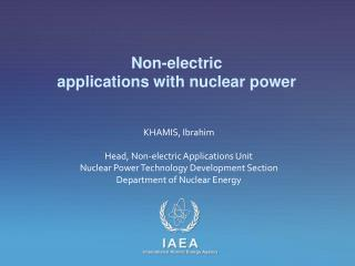 Non-electric  applications with nuclear power