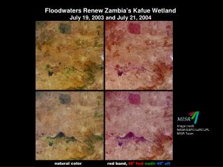 Floodwaters Renew Zambia's Kafue Wetland  July 19, 2003  and  July 21, 2004