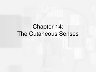 Chapter 14:  The Cutaneous Senses