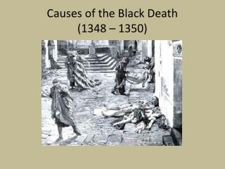 Causes of the Black Death  (1348 – 1350)