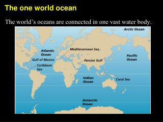 The one world ocean