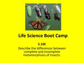 Life Science Boot Camp