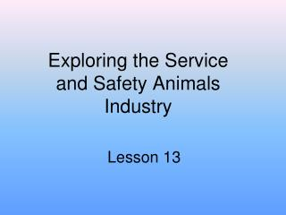 Exploring the Service and Safety Animals Industry