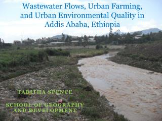 Wastewater Flows, Urban Farming, and Urban Environmental Quality in Addis Ababa, Ethiopia
