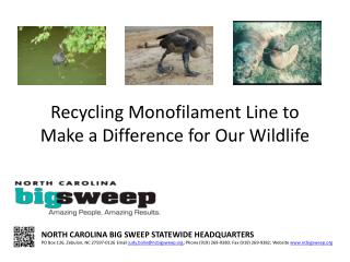 Recycling Monofilament  Line to Make a Difference for Our Wildlife