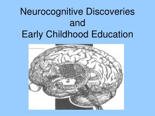 Neurocognitive Discoveries and Early Childhood Education