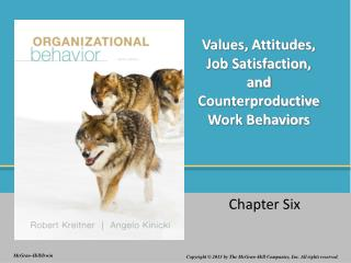 Values, Attitudes, Job Satisfaction, and Counterproductive Work Behaviors