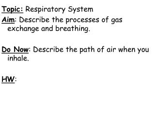 Topic:  Respiratory System Aim : Describe the processes of gas exchange and breathing.