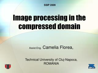 Image processing in the compressed domain