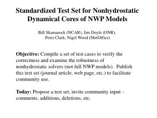 Standardized Test Set for Nonhydrostatic Dynamical Cores of NWP Models