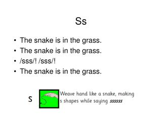 The snake is in the grass. The snake is in the grass. /sss/! /sss/! The snake is in the grass.