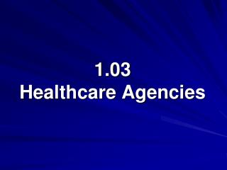 1.03  Healthcare Agencies