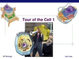 Tour of the Cell 1