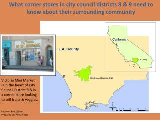 What corner stores in city council districts 8 & 9 need to know about their surrounding community