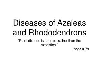 Diseases of Azaleas and Rhododendrons