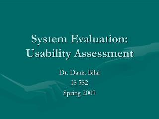 System Evaluation: Usability Assessment