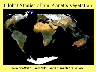 Global Studies of our Planet's Vegetation