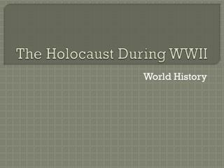 The Holocaust During WWII