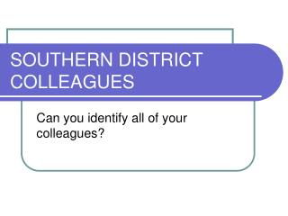 SOUTHERN DISTRICT COLLEAGUES