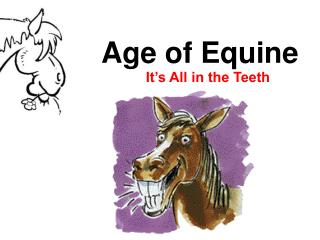 Age of Equine