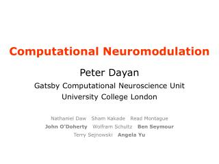Computational Neuromodulation