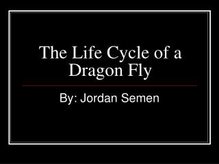 The Life Cycle of a Dragon Fly