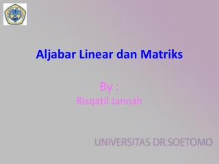 Aljabar  Linear  dan Matriks By :  Risqatil Jannah