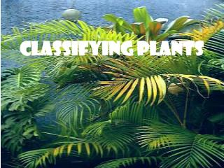 Classifying Plants
