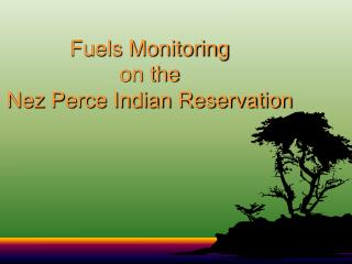 Fuels Monitoring  on the  Nez Perce Indian Reservation