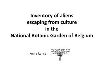 Inventory  of  aliens escaping from  culture  in the  National  Botanic  Garden of  Belgium