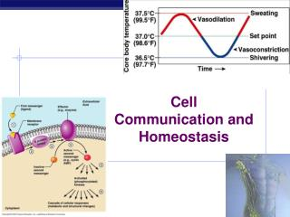 Cell Communication and Homeostasis
