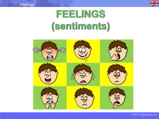 FEELINGS (sentiments)