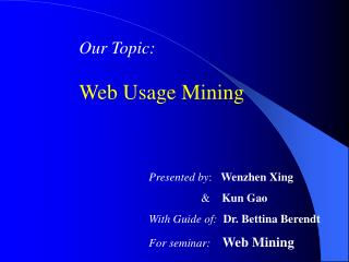 Our Topic: Web Usage Mining