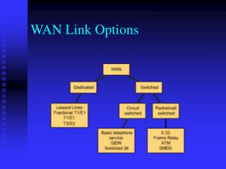WAN Link Options