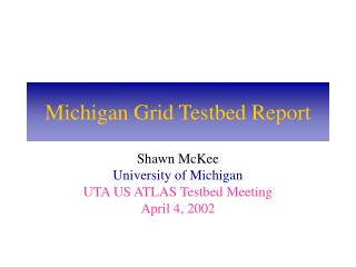 Michigan Grid Testbed Report