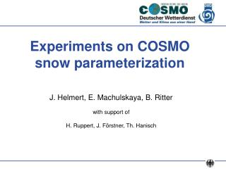 Experiments on COSMO snow parameterization