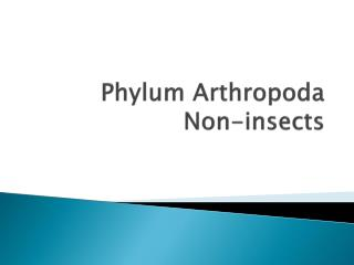 Phylum Arthropoda Non-insects