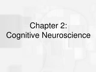 Chapter 2:  Cognitive Neuroscience